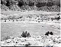 Proposed site for new Mission 66 Visitor Center and Museum and administration building. ; ZION Museum and Archives Image 004 (3ba9728a4d1b431d9b98b615963698a7).jpg