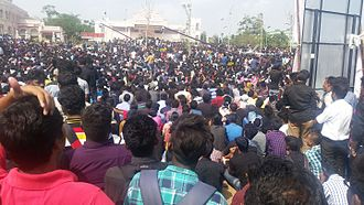 Jallikattu - Anti-ban protesters at Marina beach, January 2017.