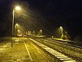 Przystanek kolejowy w Nietkowicach.jpg