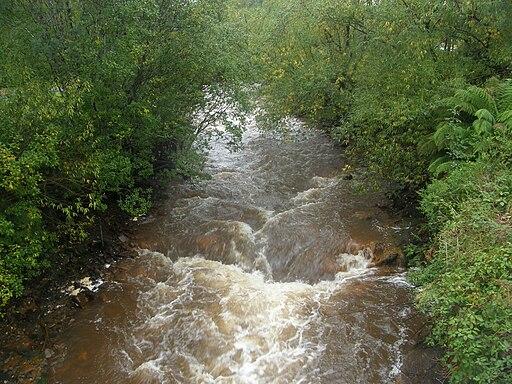 Queen River