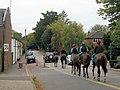 Race Horses at Tring Station - geograph.org.uk - 1511055.jpg