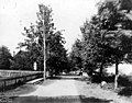 Rainier Ave, Port Gamble, Washington, August 20, 1900 (WASTATE 737).jpeg
