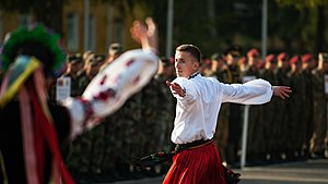 Ukrainian dance - Kozak Hopak by Military Ukrainian Dance Ensemble