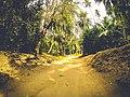 Recorrida por el Parque Nacional Natural Tayrona - 1.jpg