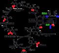 Reduktiver Acetyl-CoA-Weg Archaea.png