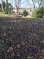 Regentgardens2.jpg