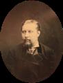 Rei D. Luís, 1876 - Carlos Relvas.png