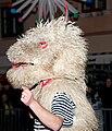 Rijecki karneval 140210 Halubajski zvoncari 14.jpg