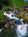 Rijeka Krupa 222.jpg