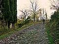Riserva Luogomano 01.jpg