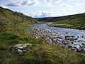 River Cassley - geograph.org.uk - 951546.jpg