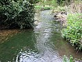 River Darenth - geograph.org.uk - 1245525.jpg
