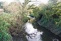 River Medway, South of Penshurst. - geograph.org.uk - 1028421.jpg