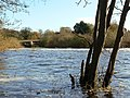 River Ure at Boroughbridge - geograph.org.uk - 1580732.jpg