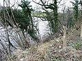 River Wye - just - geograph.org.uk - 685119.jpg