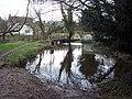 River Wylye at Sherrington - geograph.org.uk - 327197.jpg