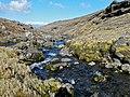 Rivière au printemps - panoramio.jpg