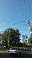 Road signals.jpg