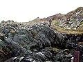 Rock Strata near Craignish Point - geograph.org.uk - 630124.jpg