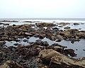 Rocks below Long Nab - geograph.org.uk - 1473183.jpg