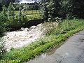 Rot-bei-Hochwasser829.JPG
