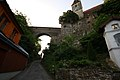 Ruine Senftenberg 9858 10-06-11.JPG