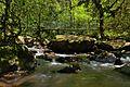 Ruisseau de Bardes, Arifat - 09.jpg