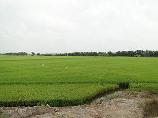 Mộc Hóa District District in Mekong Delta, Vietnam