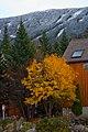 Saddleback Mountain (8072430252).jpg