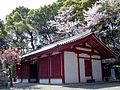 Sakuraijinnjya001.JPG