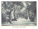 Salmond(1896) pg070 the Avenue, cape Town.jpg