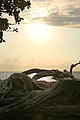 Samuel M. Spencer Beach Park, Waimea (504688) (23583460013).jpg