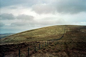 Anglo-Scottish border - A fence marking the border