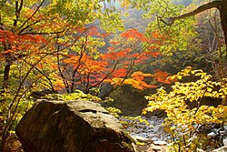 Seoraksan in the Fall 3- 설악산 단풍.jpg
