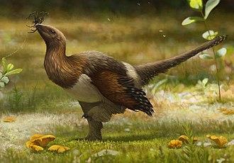 Anchiornithidae - Life restoration of Serikornis sungei