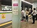 Shinjuku Line Ichigaya station platforms with platform doors july 29 2019 620pm various 18 22 58 684000.jpeg