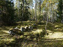 Photographie de pierres alignées sur un terrain boisé