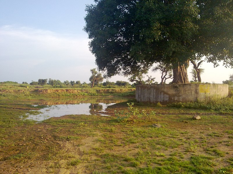 File:Shivnathpura - panoramio - Indrapal Jangid.jpg