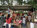 Shop selling from Lalbagh flower show Aug 2013 8653.JPG