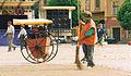 Sibiu street-sweeper.jpg