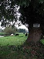Sign at entrance to Priory Farm - geograph.org.uk - 591927.jpg