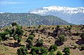 Sisakht - Dena - Padena road - panoramio.jpg