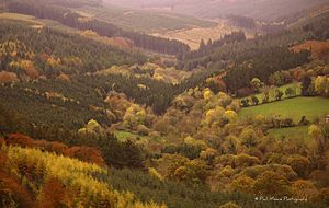 Slieve Bloom Mountains - A view of the Slieve Blooms from the Glinsk Castle Hiking Loop