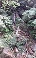 Small Waterfall at Sinharaja Rain Forest.jpg