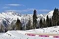 Sochi2014 - panoramio (1).jpg