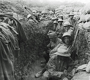 Royal Irish Fusiliers - Troops from the Royal Irish Fusiliers serving in Gallipoli in Autumn 1915