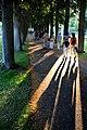 Sommer im Bad Mergentheimer Kurpark. 09.jpg