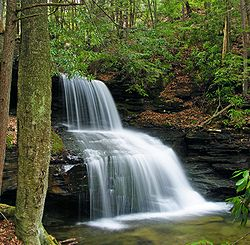Round Island Run Falls within Sproul State Forest