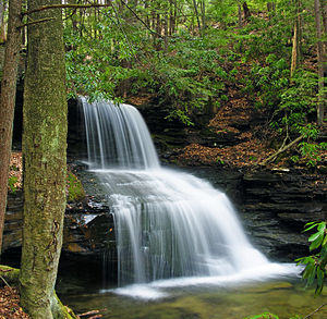 East Keating Township, Clinton County, Pennsylvania - Round Island Run Falls within Sproul State Forest