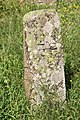 Spomenici na seoskom groblju u Nevadama (114).jpg